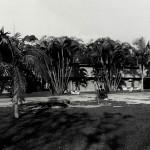 Antiga Fachada da Imprensa Universitária
